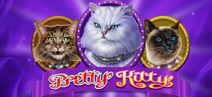 Pretty Kitty Slot Game